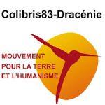 COLIBRIS83-Dracénie