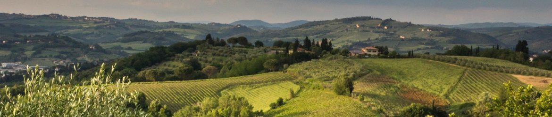 cropped-tuscany-2044332_1920.jpg