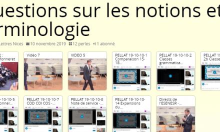 Etude de la Langue en lycée – Questions sur les notions et la terminologie en vidéo