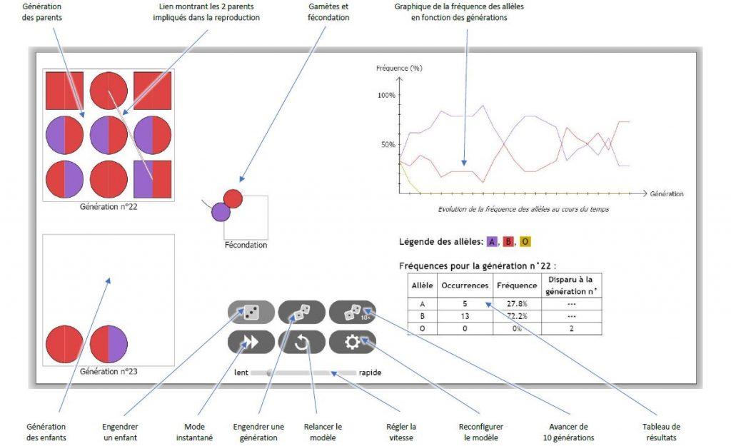 logiciel dérive génétique cosentino