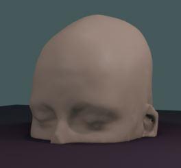 Reconstitution (très floutée) du visage du sujet 13231