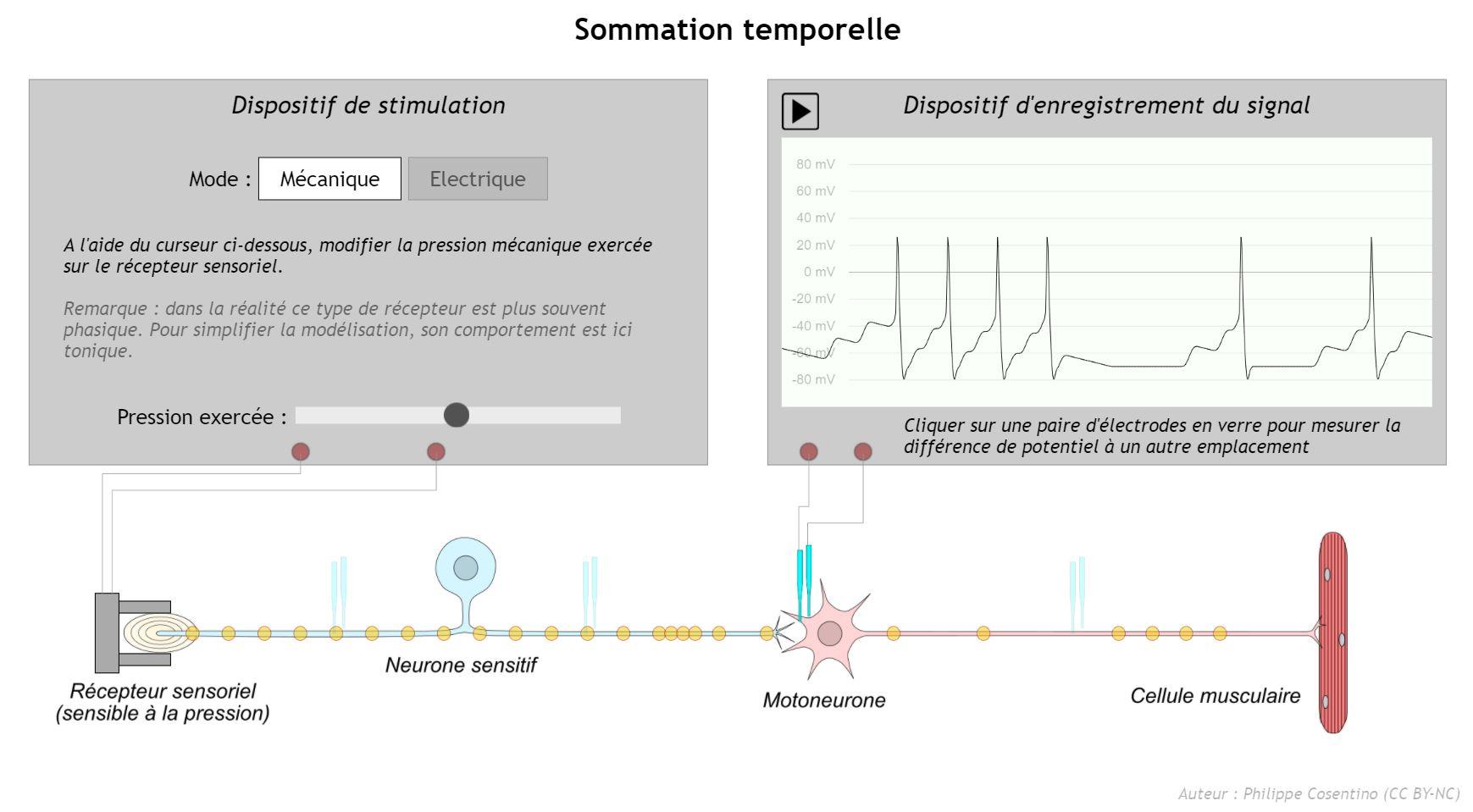 """Capture d'écran du logiciel """"Sommation temporelle"""""""